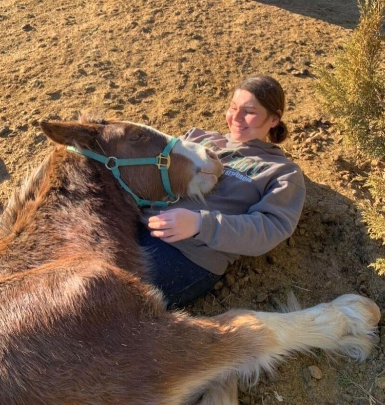 Зарим морь ч бас эзнээ тэврэх дуртай.