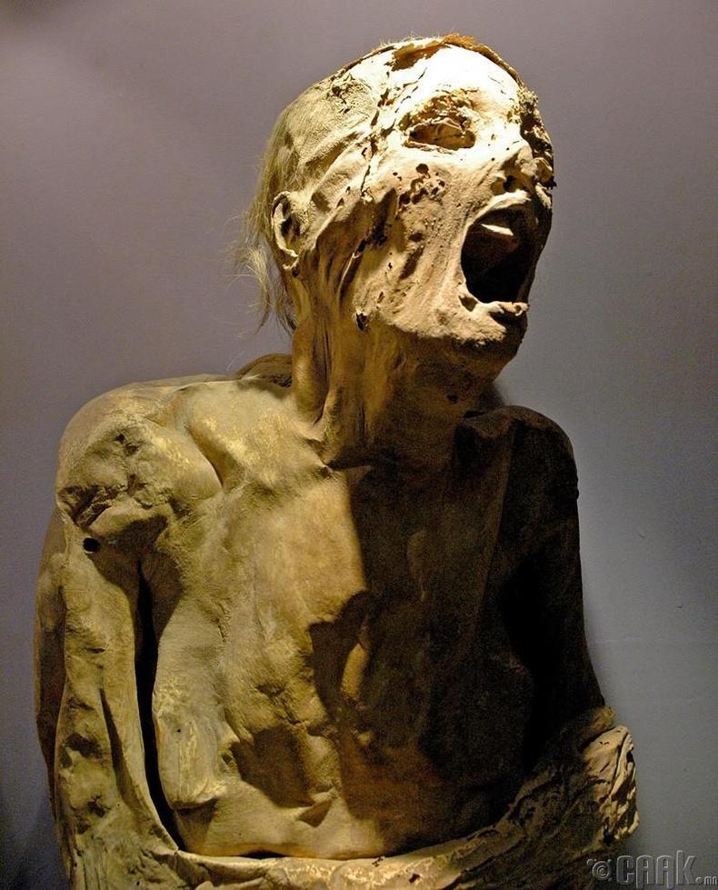 Гуанахуатогийн музей нь орилж буй мумми