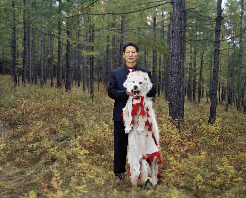 Бүрэн ба түүний агнасан чоно. Монгол, 2013
