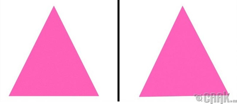 Дараах 2 гурвалжин хоорондоо ямар ялгаатай байна вэ?