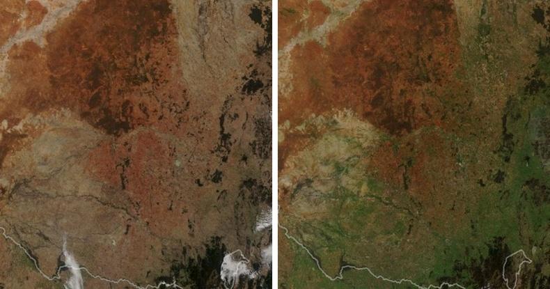 Зүүн өмнөд Австрали ногоон өнгөтэй болжээ