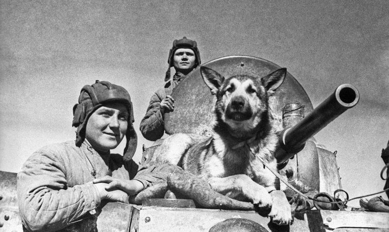 ЗХУ-ын баатар Жульбарс нохойн түүх