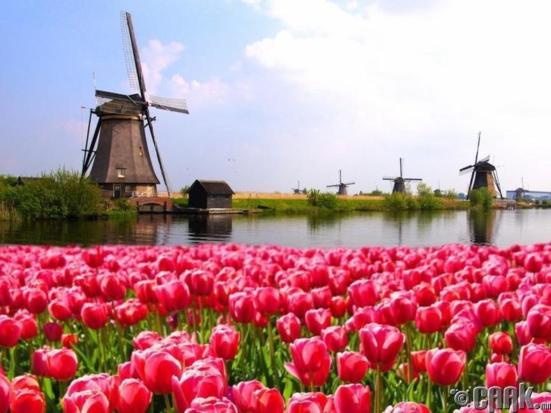 Нидерланд (ДНБ: $56.435)
