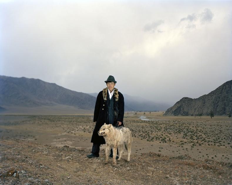 Раблет ба түүний агнасан чоно. Монгол, 2013