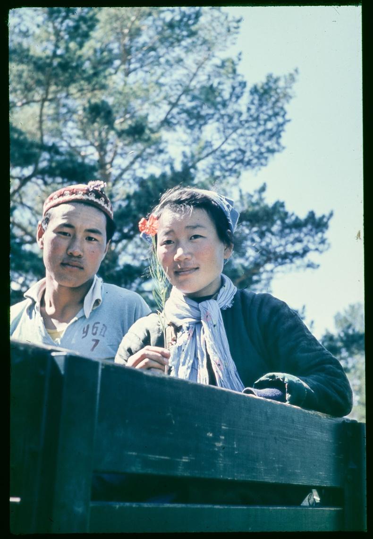 Залуу хос - 1961