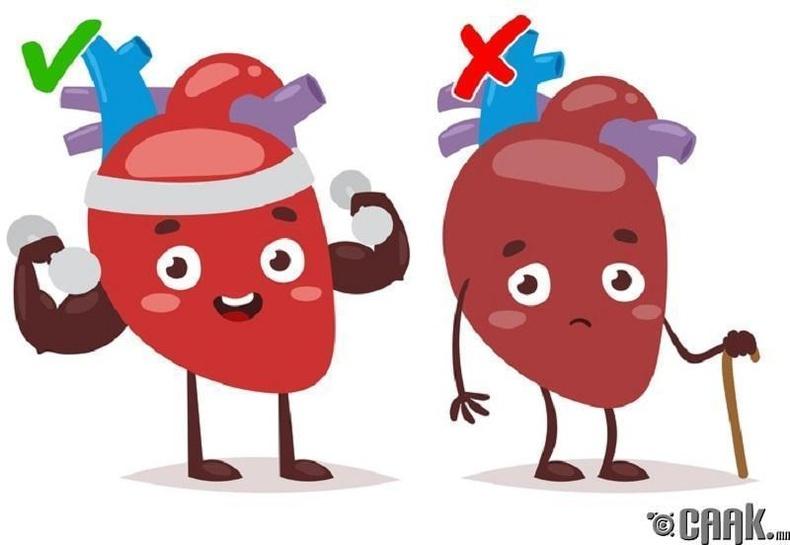 3. Зүрхний цохилтыг багасгадаг