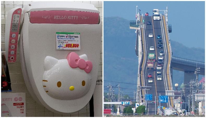 Зөвхөн Японд л харж болох зүйлс