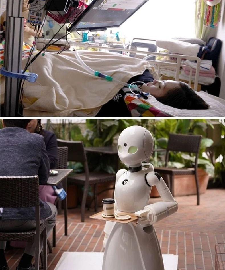 Япончууд хөгжлийн бэрхшээлтэй иргэдийгч орлоготой байлгахад ихээхэн анхаардаг бөгөөд саажилттай хүмүүсийг кафе дахь робот зөөгч удирдах ажилд авдаг.