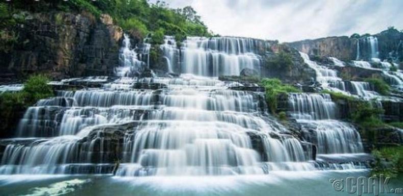 Понгур хүрхэрээ, Вьетнам