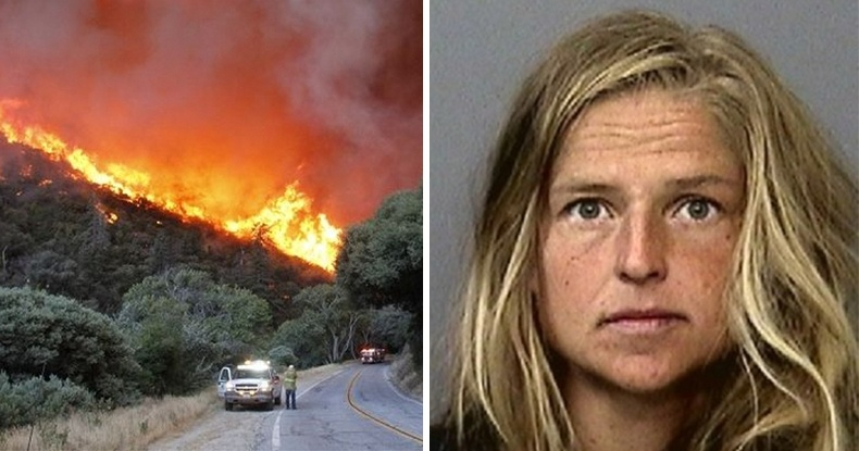 Америкийн удган эмэгтэй баавгайн шээс буцалгах гэж байгаад томоохон ойн түймэр тавьжээ