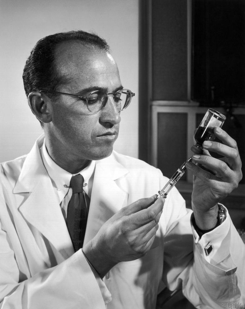 Жонас Сальк (Jonas Salk 1914-1995 он)