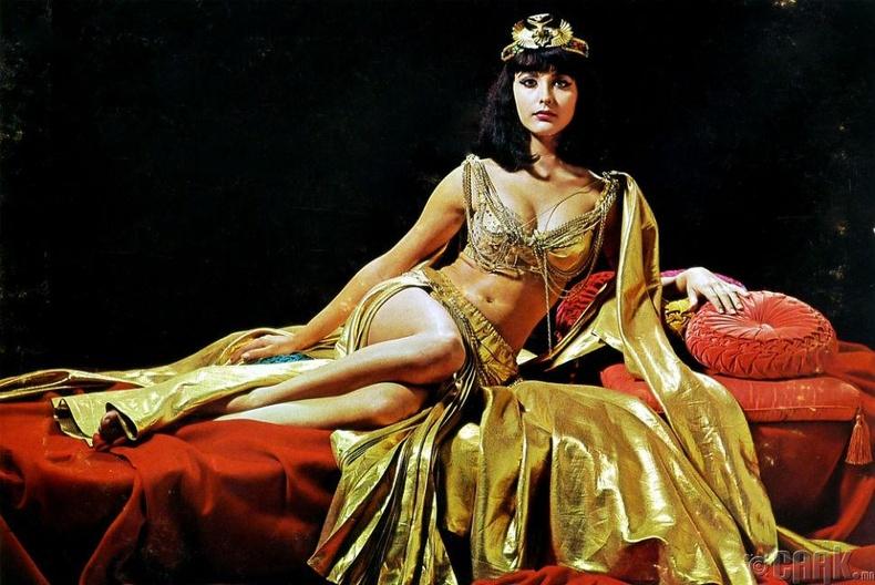 """""""Клеопатра бол Египет хүн"""""""