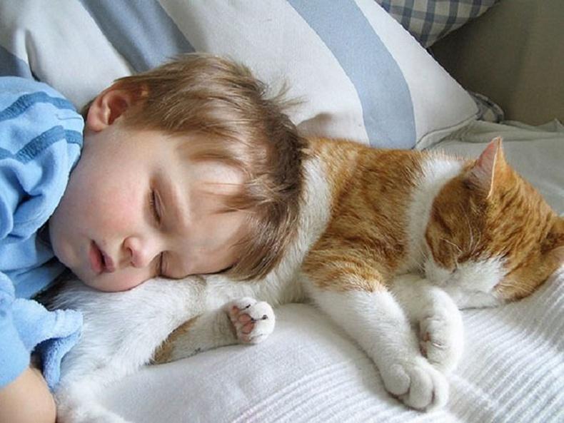 Сайн унтана