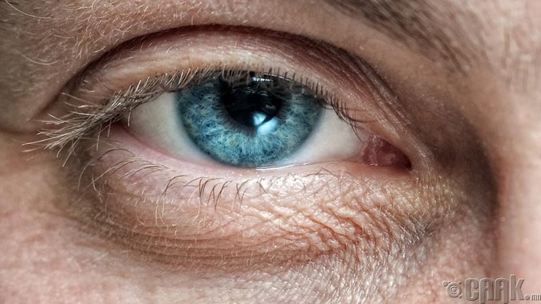 Нүд яагаад хавддаг вэ?