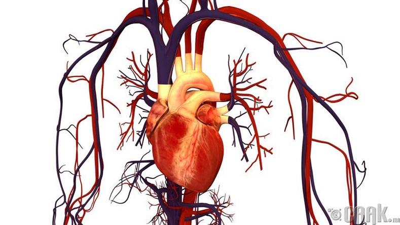 Зүрхний шигдээс, цус харвалтаас сэргийлнэ
