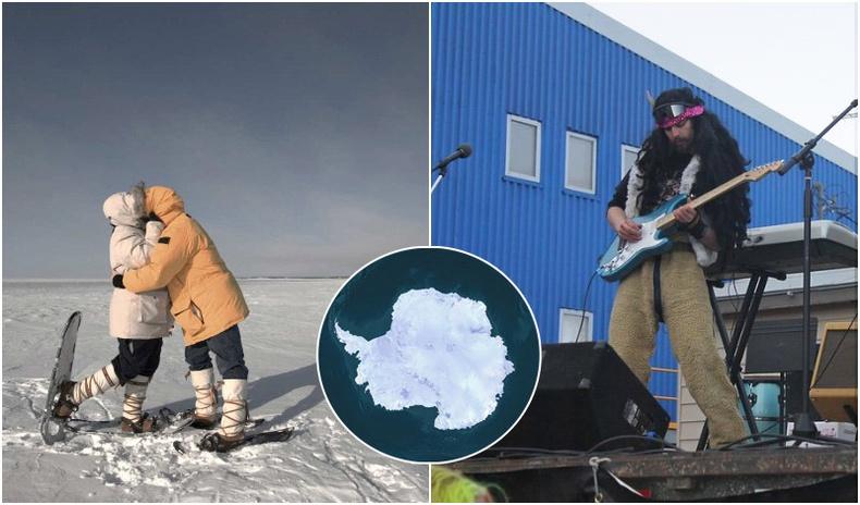 Антарктид тивд болдог санаанд оромгүй зүйлс