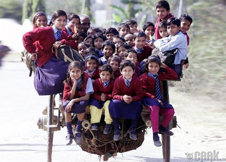 Энэтхэгийн Дели хотын сургуулийн сурагчид морин тэргээр хичээлдээ явж байна