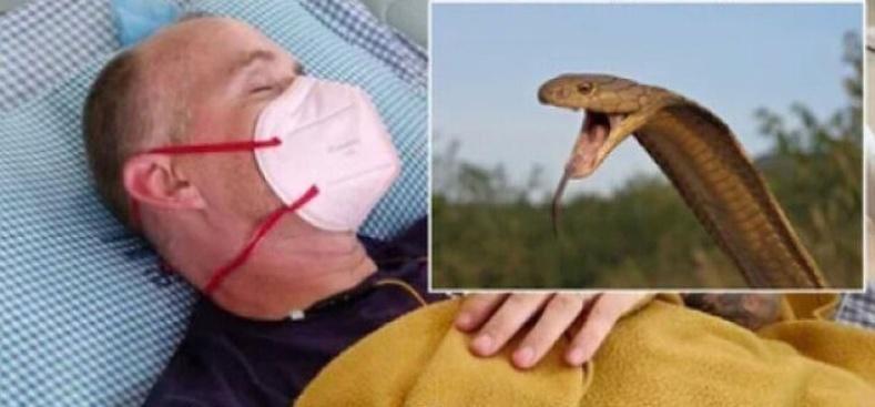 Энэхүү Британи эр Энэтхэгт очоод халуун хумхаа, чичрэг өвчин, эцэст нь КОВИД-ын халдвар авчээ. Одоо тэрээр кобра могойд хазуулж, үхэл амьдралын зааг дээр байна.