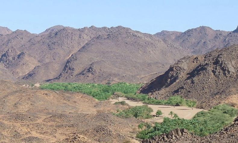 Тимиа, Нигер