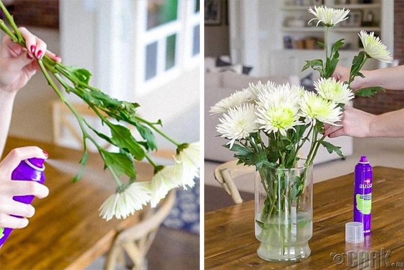 Баглаатай цэцгийн дэлбээ болон навчны доод хэсгийг үсний лакаар шүршвэл илүү удаан амьд байна