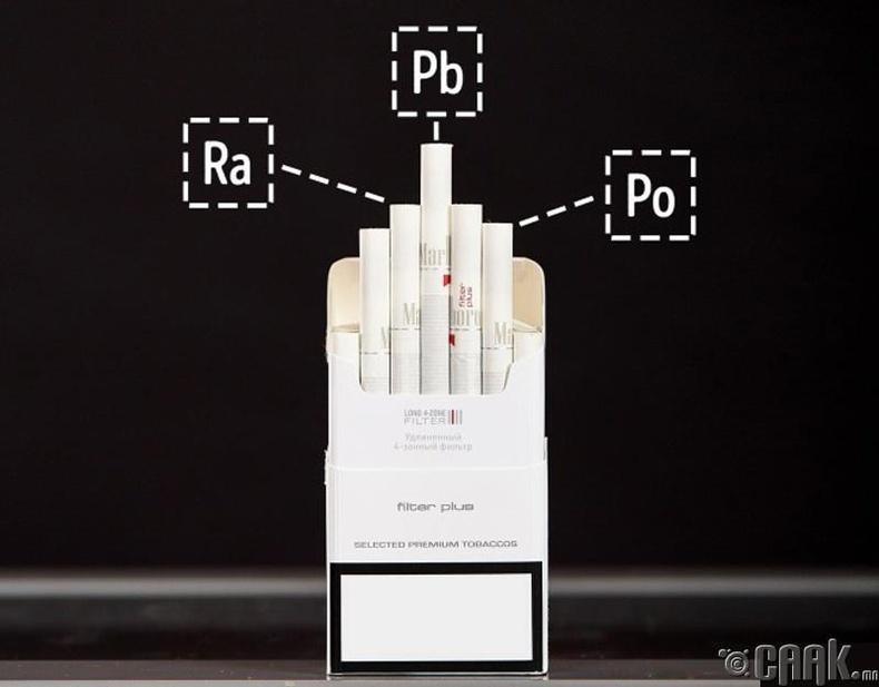 Тамхинд гараа ч хүргэх хэрэггүй