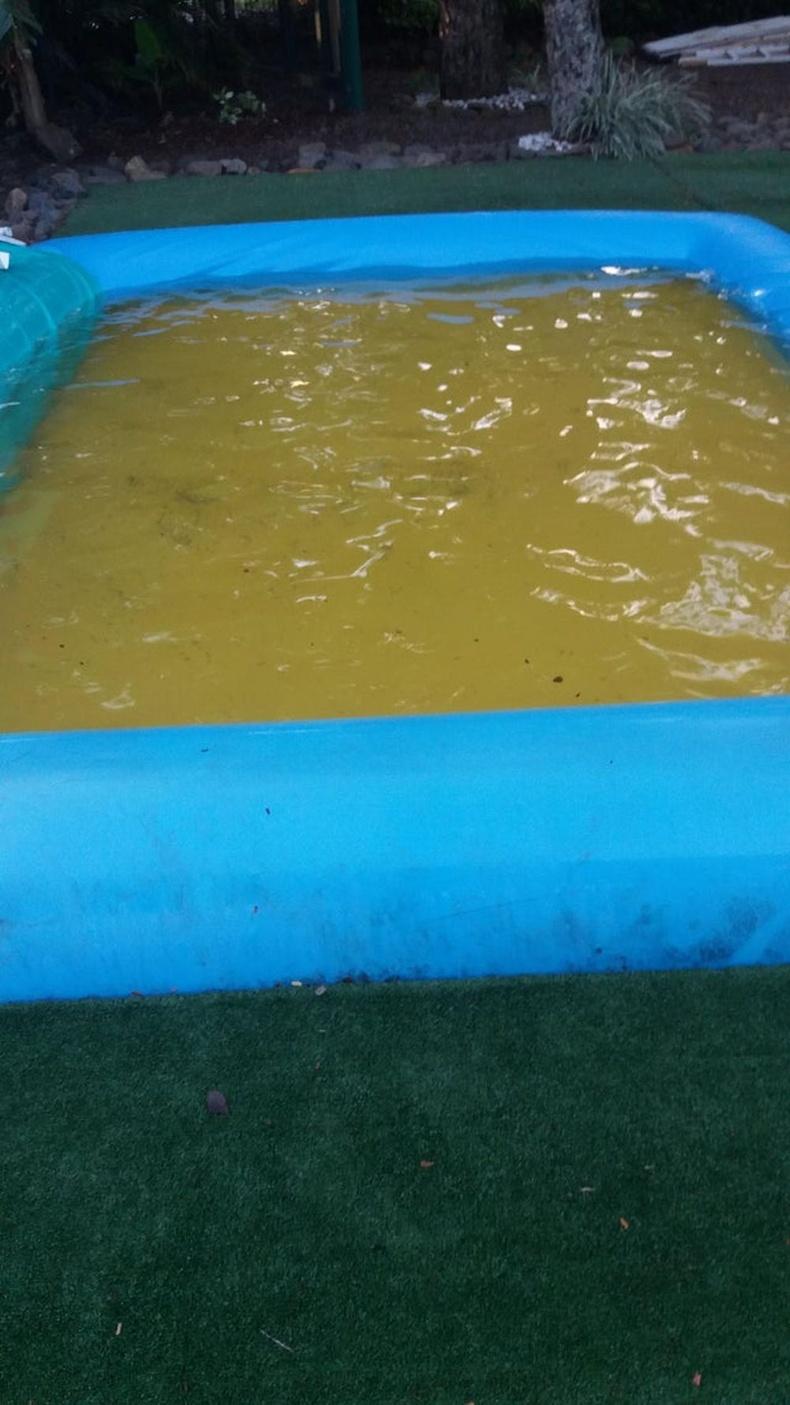 Шар өнгөтэй дэвсгэр усыг бүхэлд нь бохир заваан харагдуулах үед...