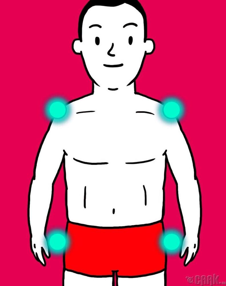 Дугуй эсвэл лийр хэлбэртэй, өөх хуримтлагдах хандлагатай бие