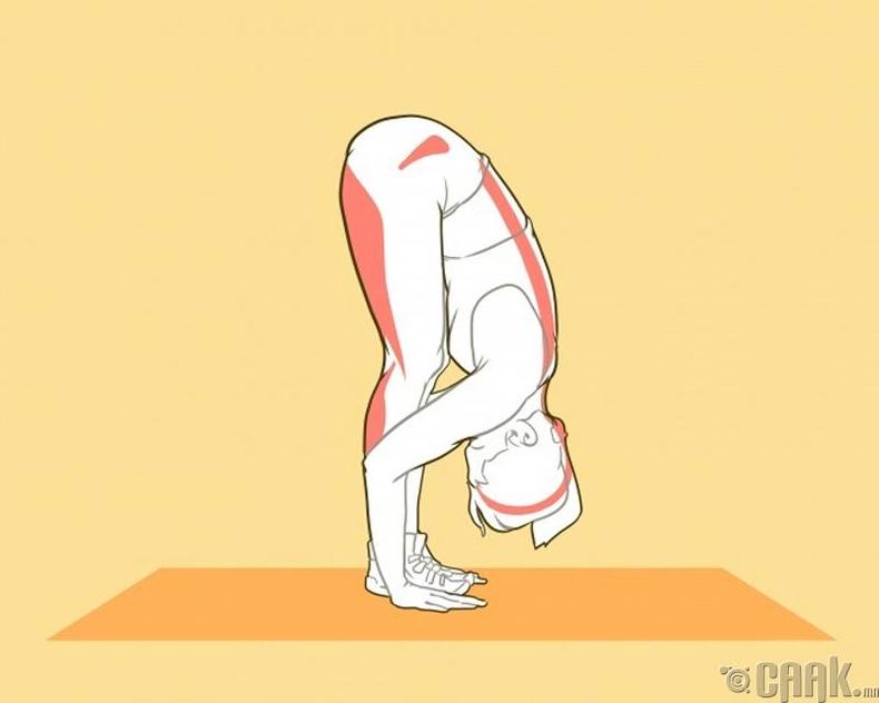 Сунгалтын дасгал хийх