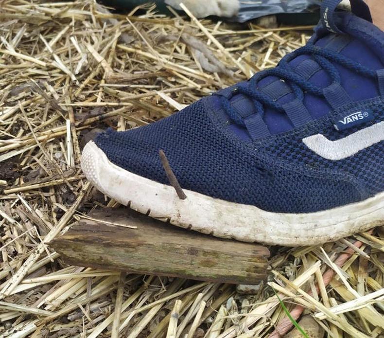 """""""Фермийн хашаагаар явахдаа ямар гутал өмсөх ёстойг надад ойлгууллаа"""""""