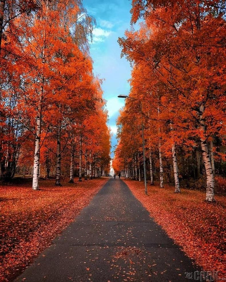 Оулу, Финлянд