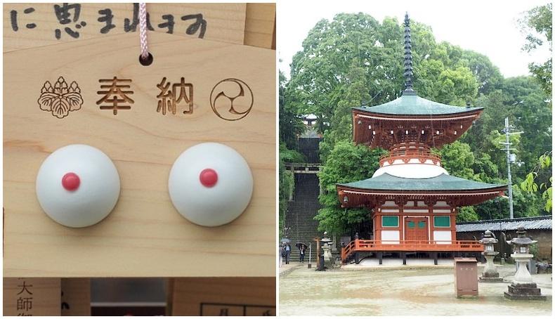 Эмэгтэйчүүдийн хөхөнд зориулсан Япон сүм