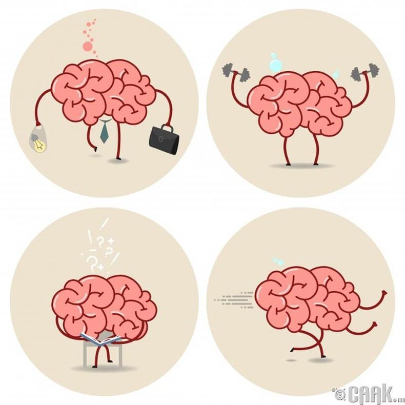 Бидний тархи хүчин чадлынхаа ердөө 10 хувийг ашигладаг