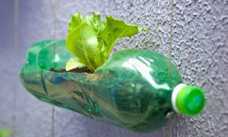 Хуванцар сав ашиглан цэцгийн сав хийх хялбар арга