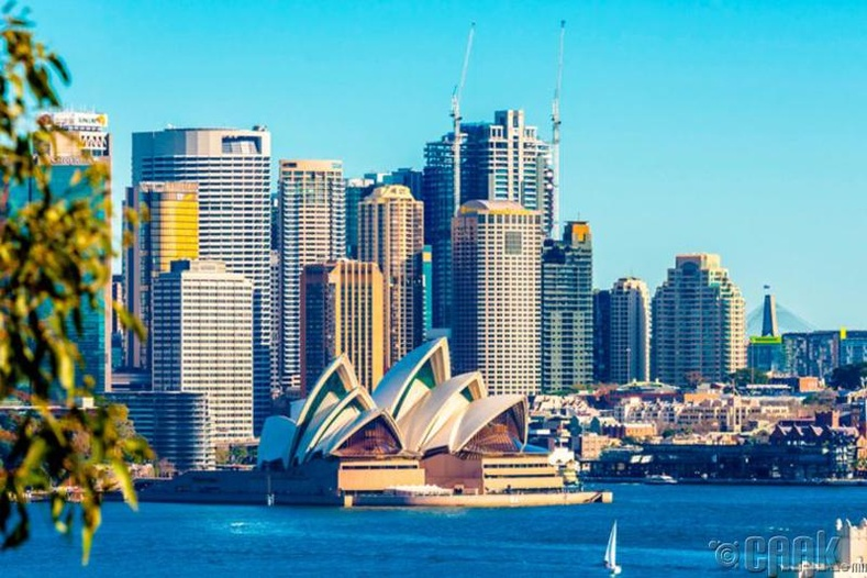 Австралийн Сиднейд олон нийтийн газар хараал хэлбэл 500 хүртэлх доллароор торгуулна
