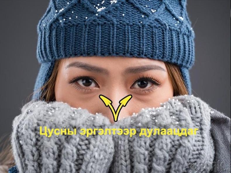 Нүд яагаад хүйтэнд хөлддөггүй вэ?