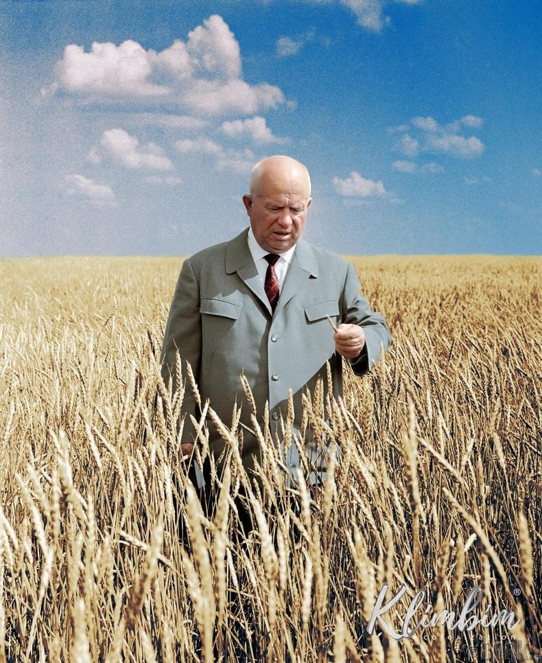 Зөвлөлтийн удирдагч Никита Хрущев Казахстан дахь тариалангийн талбай дээр