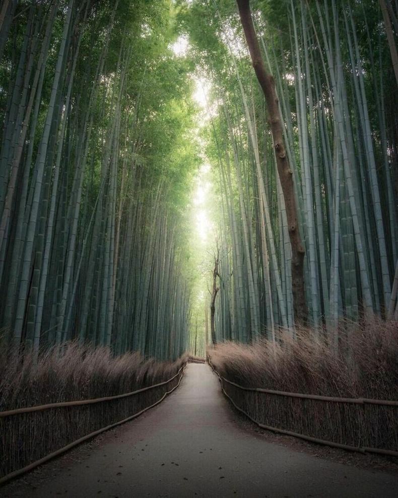 Кёото, Япон