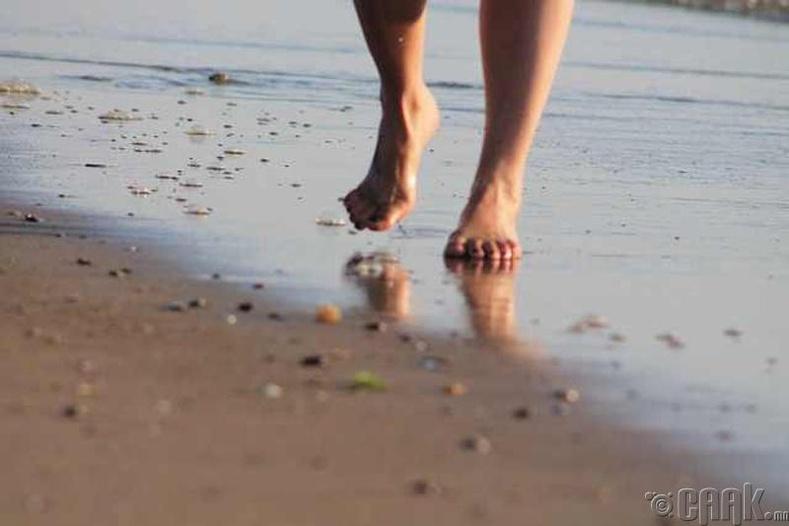 Элстэй хөл