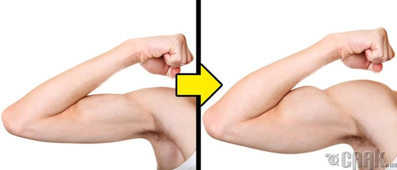 Бууцай булчингийн хөгжилд тусална