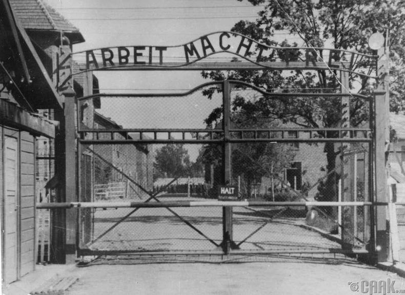 """1940 онд Освенцимийн хоригдлуудын анхны цуваа ирж байх үед """"Макдоналдс"""" сүлжээ байгуулагдаж байв."""