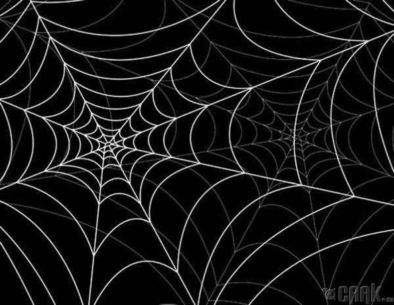 """Marianas Web"""