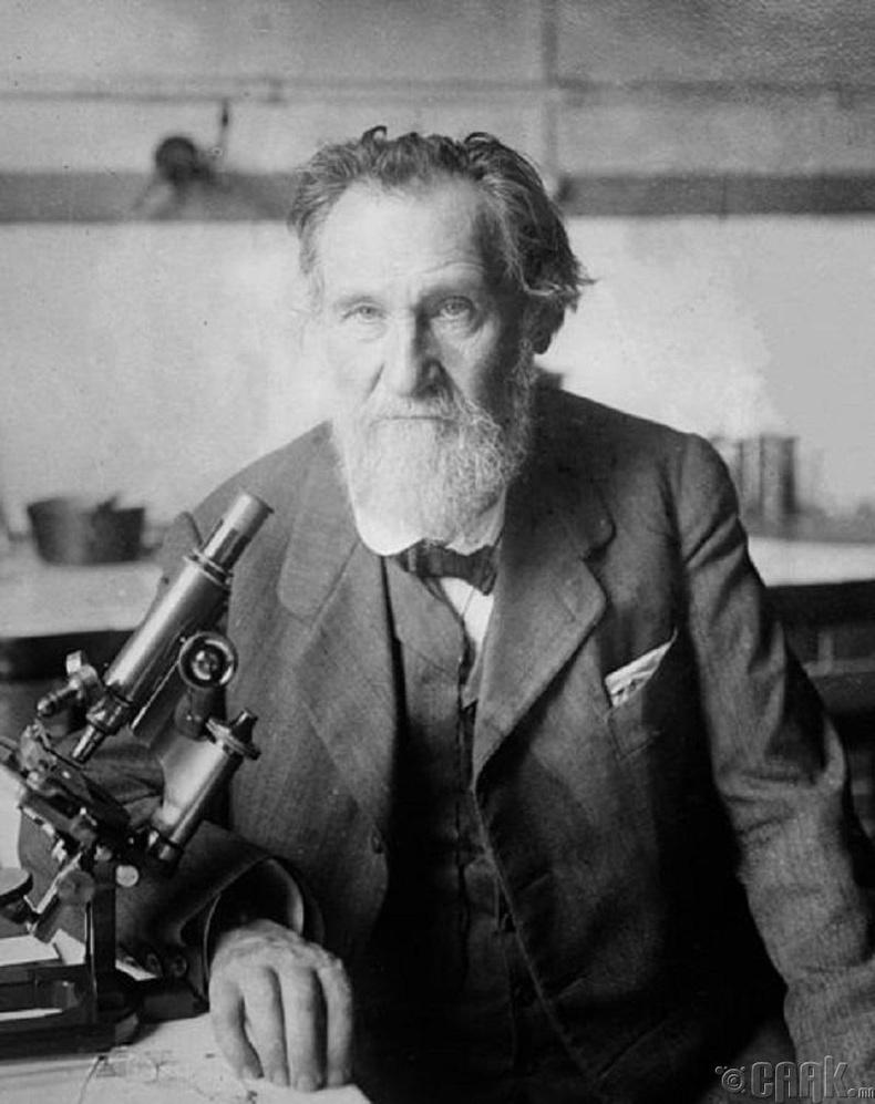 Илья Мечников (Ilya Mechnikov 1845–1916 он)