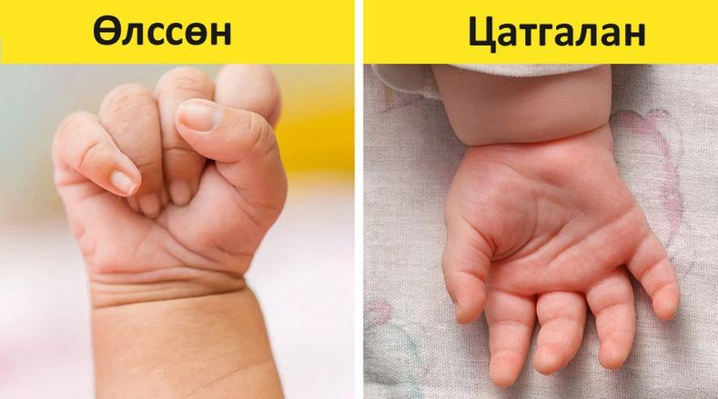 """Нялх хүүхдийн """"хэлийг"""" ойлгох толь бичиг"""