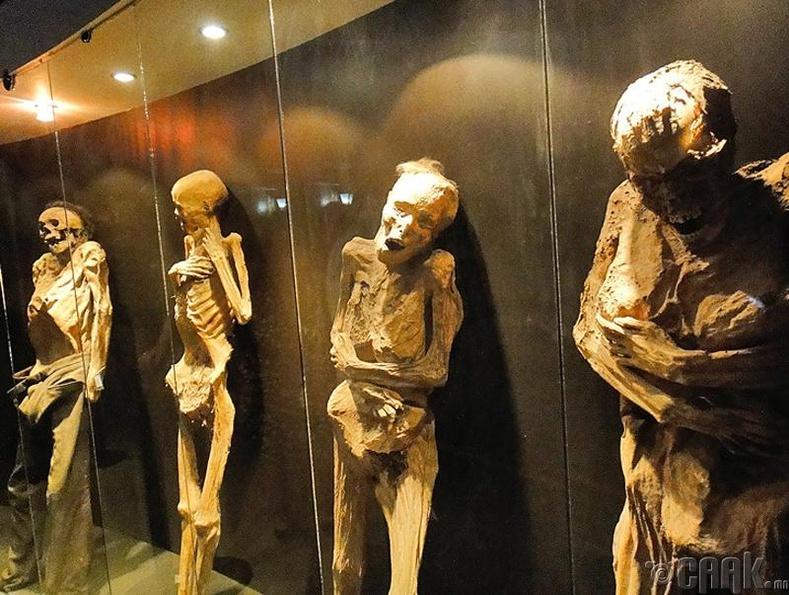 Гуанахуато дахь занданшсан шарилын музей