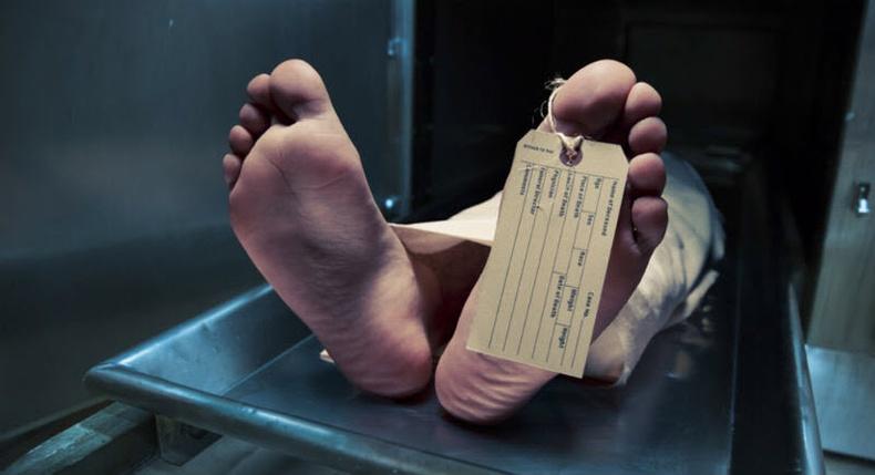 Хүмүүс юунаас болж хамгийн их амиа алддаг вэ?