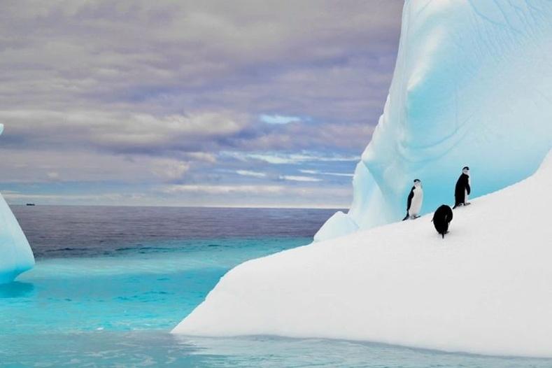 Нэг мөсөн уул нь 5 жилийн турш нэг сая хүний ундны усны хэрэгцээг  хангаж чадна.
