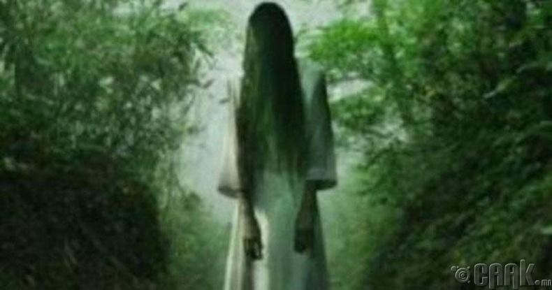 Модонд дүүжлэгдсэн эмэгтэй