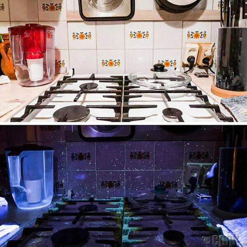 Гал тогоон дахь бактери