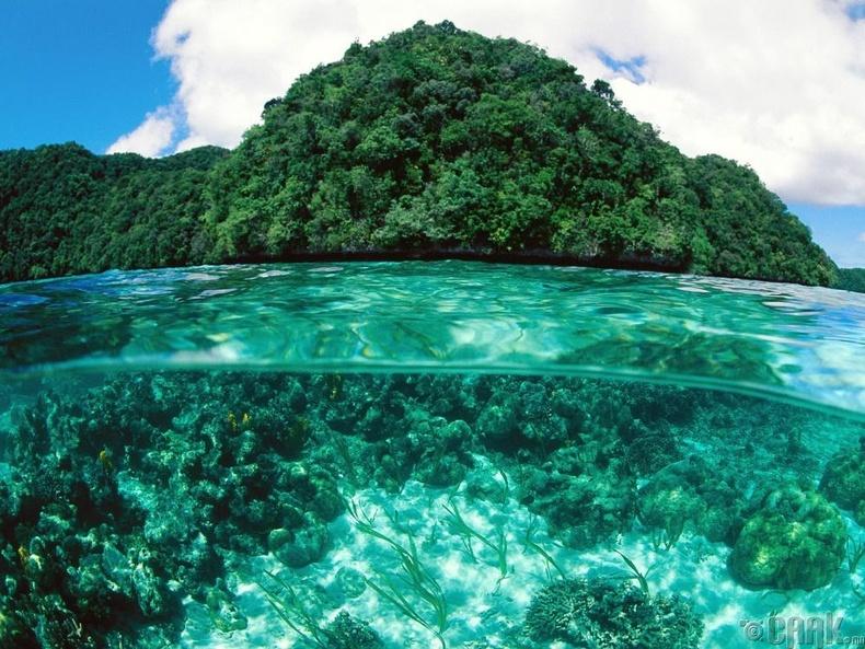 Хадан арлууд, Палау