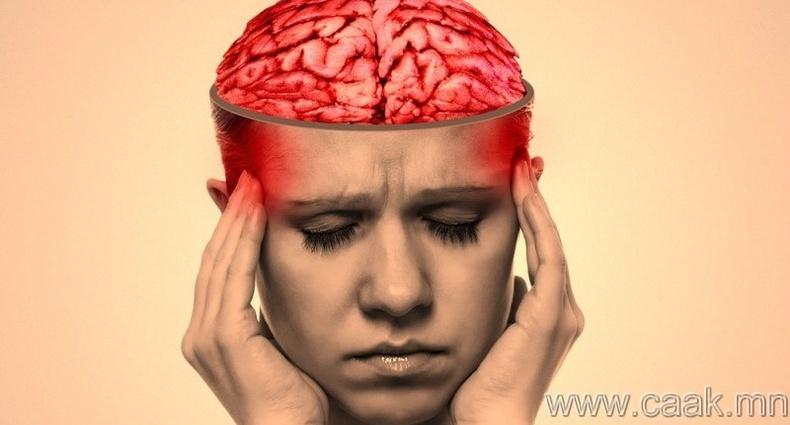 Бид ердөө тархиныхаа 10 хувийг ашигладаг
